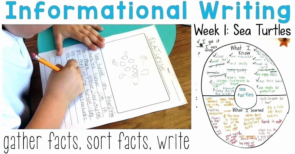 Mammals Worksheets for 2nd Grade Nonfiction Worksheets 2nd Grade Informational Text