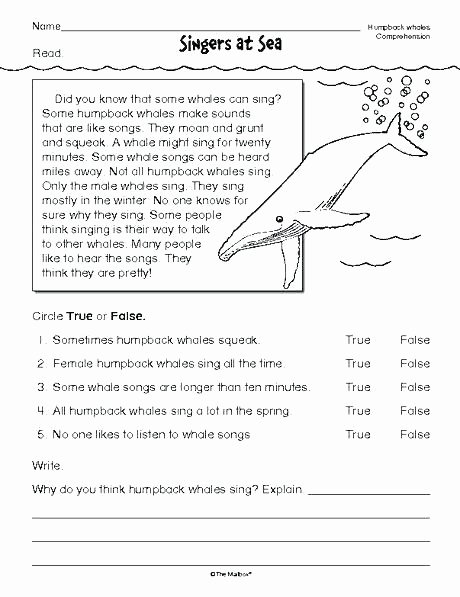 worksheets for grade printable worksheets grade worksheet for 3 elegant reading multiple choice worksheets for grade landform map worksheets 2nd grade landform worksheets for 2nd grade