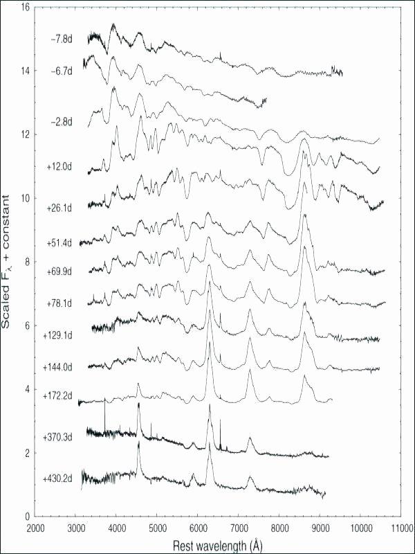 Math Dot to Dot Worksheets Line Plot Worksheets Grade Fresh Frequency Tables Dot Plots