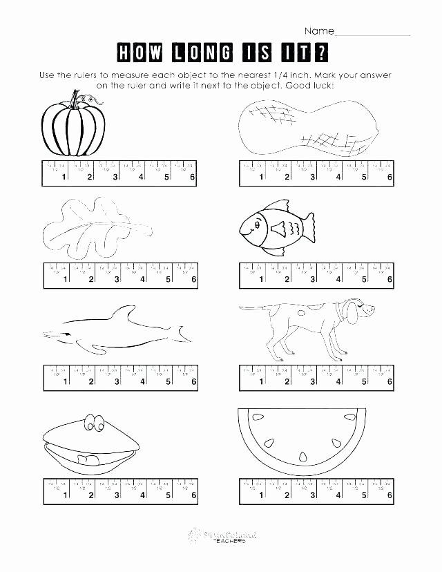 Measurement Worksheet Grade 3 Ruler Line Inches Math Fractions A Worksheet Present