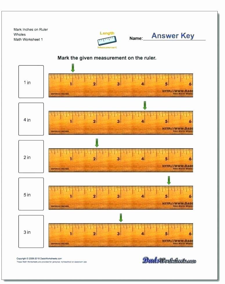 Measurement Worksheets for 2nd Grade 2nd Grade Measurement Worksheets Free Small Size Inches 2