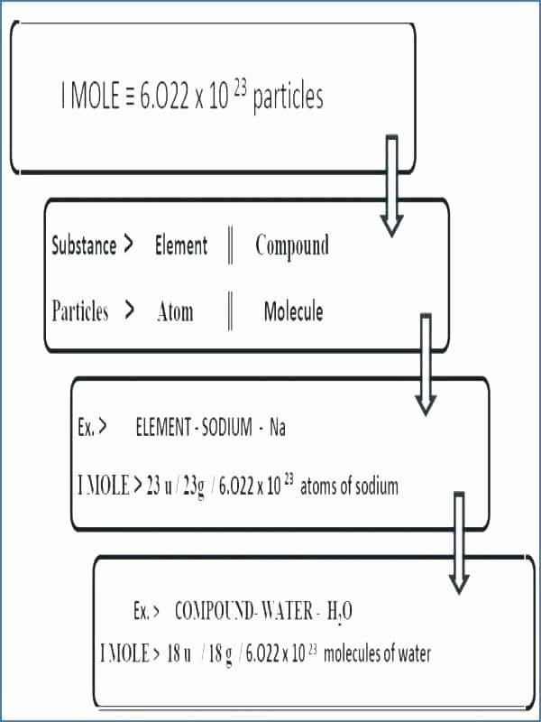 Measurement Worksheets for 2nd Grade Mass Worksheets