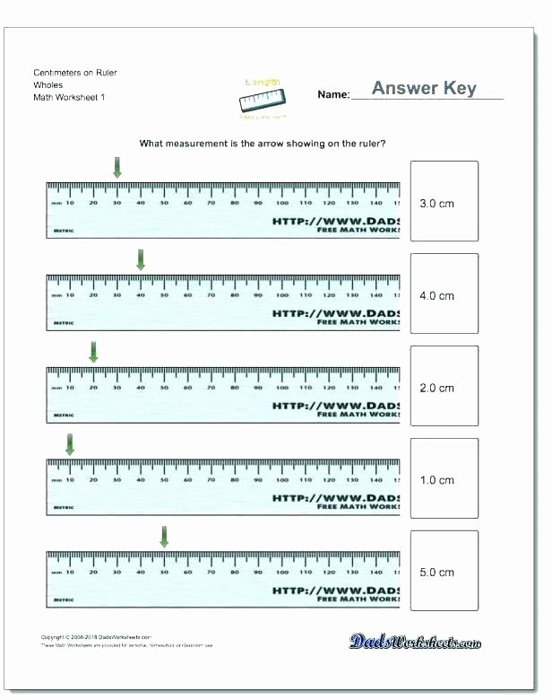 Measuring In Inches Worksheets Free Printable Measurement Worksheets Math for 2nd Grade Fo