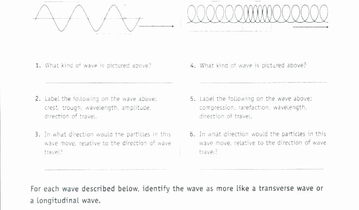 Middle School Science Worksheets Pdf First Grade Science Worksheets Pdf