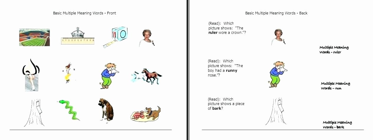 Multiple Meaning Worksheets 1st Grade Vocabulary Worksheets – Ccavzyfo