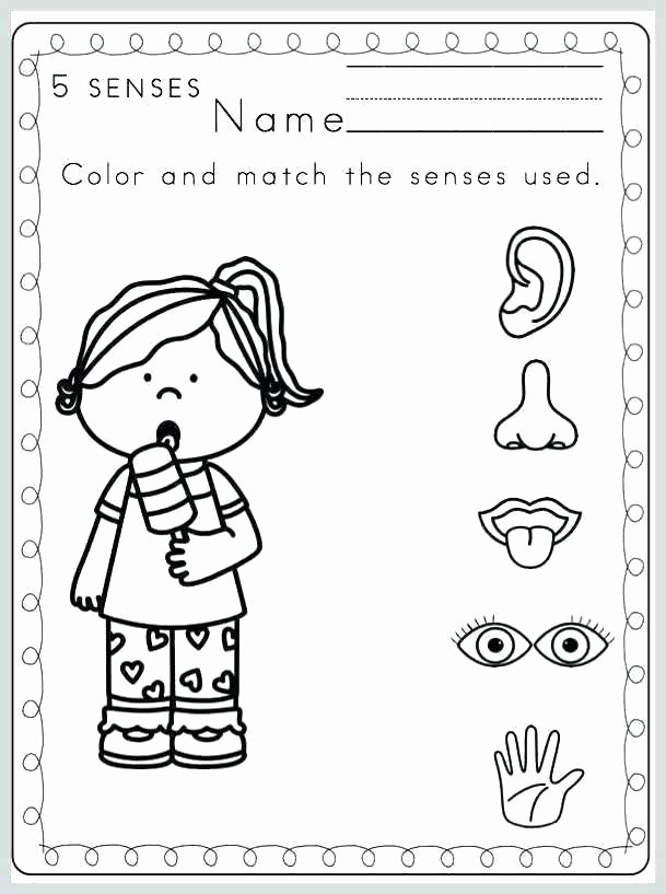 My 5 Senses Worksheets 5 Senses Coloring Pages