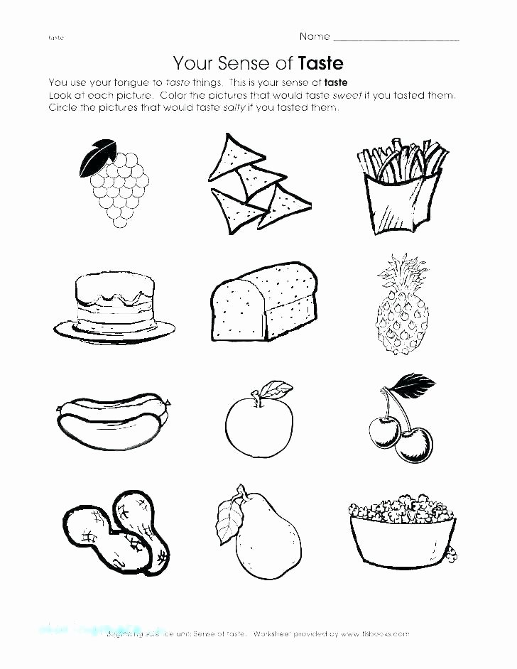 My 5 Senses Worksheets My Five Senses Coloring Pages – Club Osijek