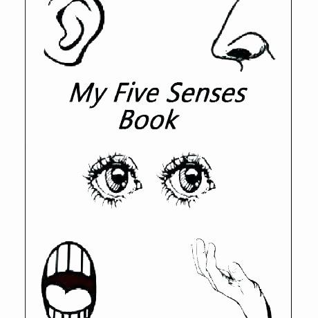 My 5 Senses Worksheets My Five Senses Worksheet Preschool the Printable Sense