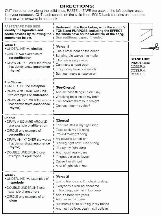 Non Literal Language Worksheets Non Literal Language Worksheets