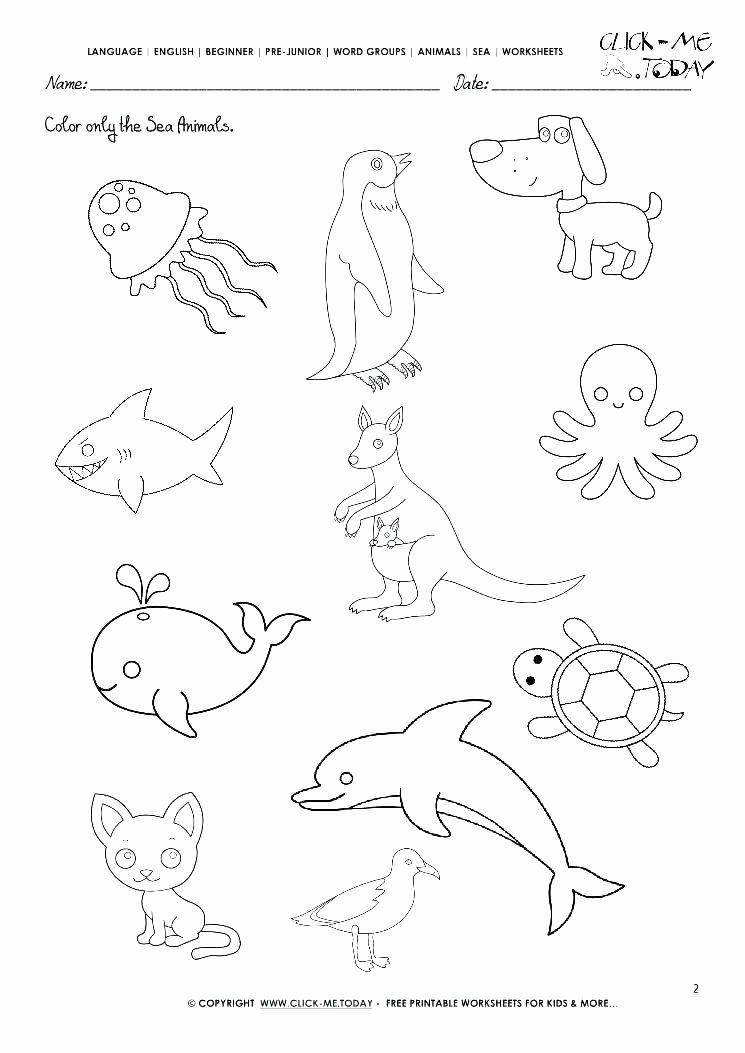 Ocean Floor Worksheets 5th Grade Ocean Worksheets Motion the Ocean Motor Skills Worksheets
