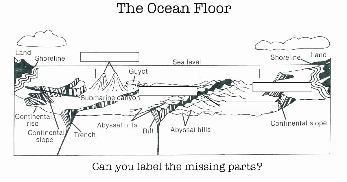 Ocean Worksheets for 2nd Grade Water Cycle Printable Worksheets
