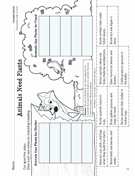 plants and animals worksheets interdependence of plants and animals worksheets natural sciences plants and animal cells worksheets printables free