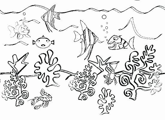 Oceans Worksheets for Kindergarten Ocean Life Printables