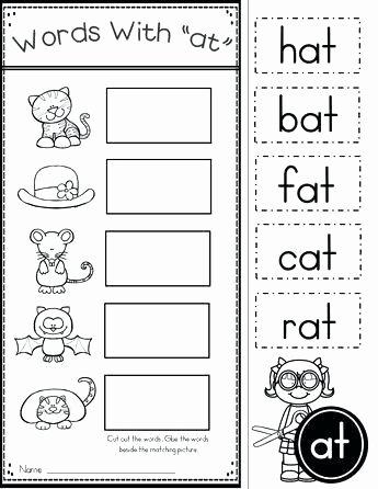 Op Word Family Worksheets Word Family Worksheets Kindergarten Free