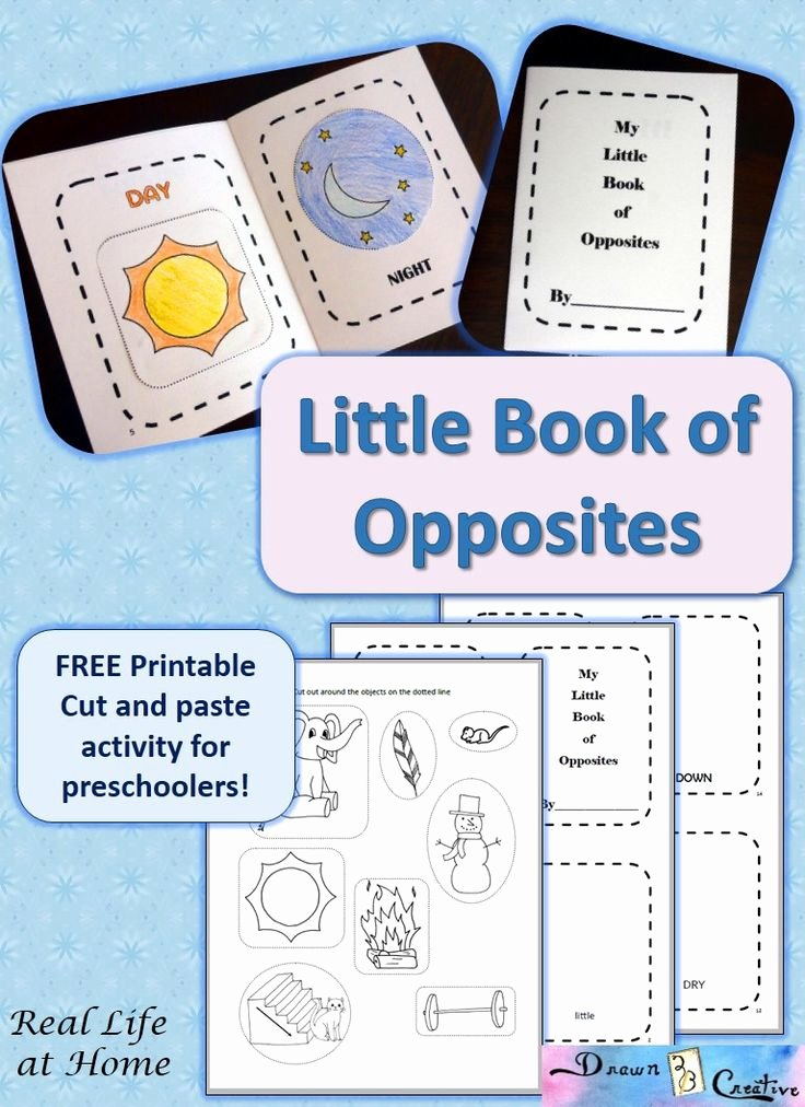 Opposites Preschool Worksheets Mikayla Rose Mikaylajr On Pinterest