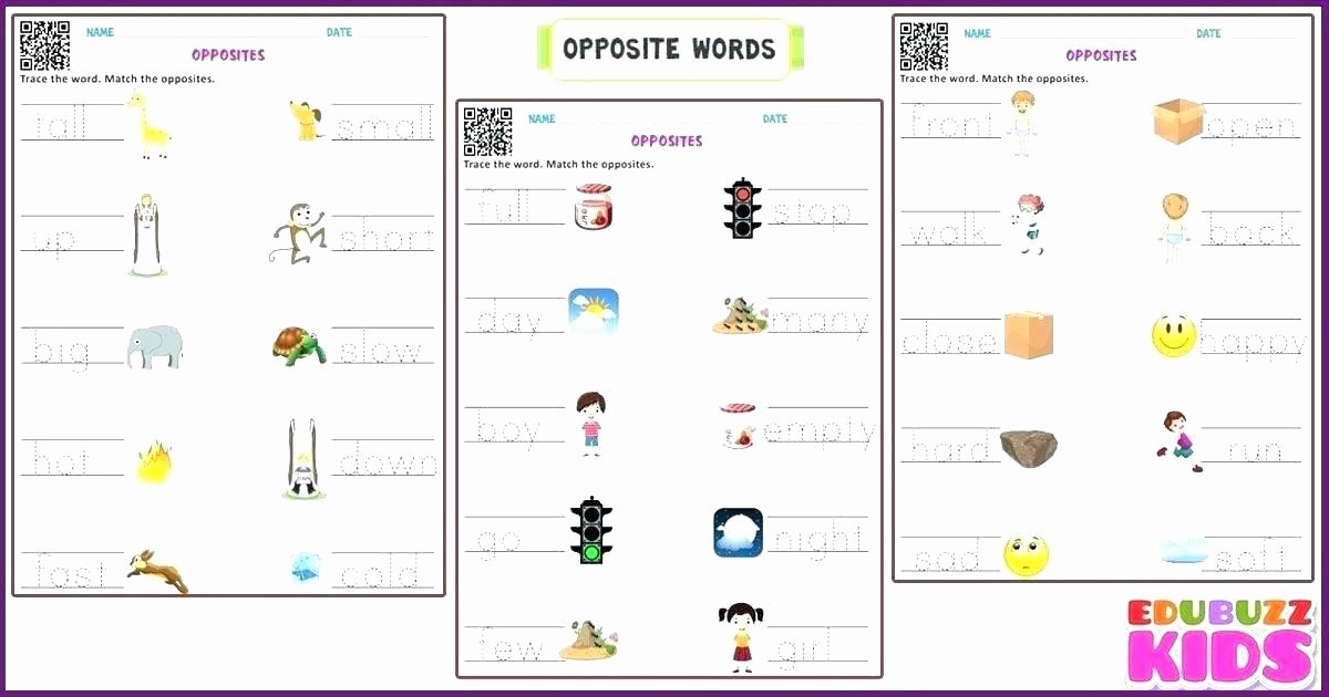 Opposites Preschool Worksheets Synonyms Kindergarten
