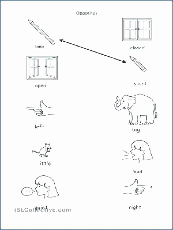 Opposites Preschool Worksheets Word Bank Worksheets – Trungcollection