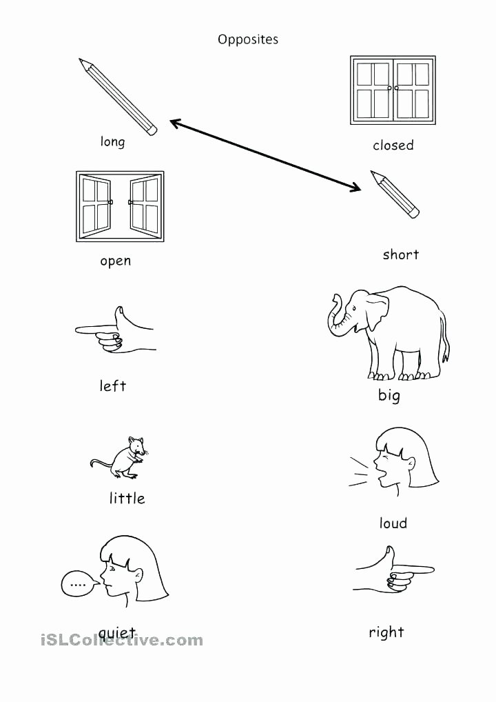 Opposites Worksheet Kindergarten Three Letter Words for Kindergarten Worksheets