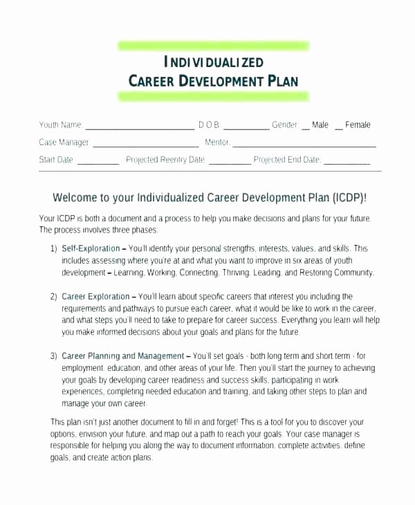 Personal Development Worksheet Awesome Personal Professional Development Plan Template