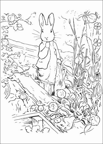 Peter Rabbit Worksheets Peter Rabbit Coloring Pages Coloring Pages Patinsudouest