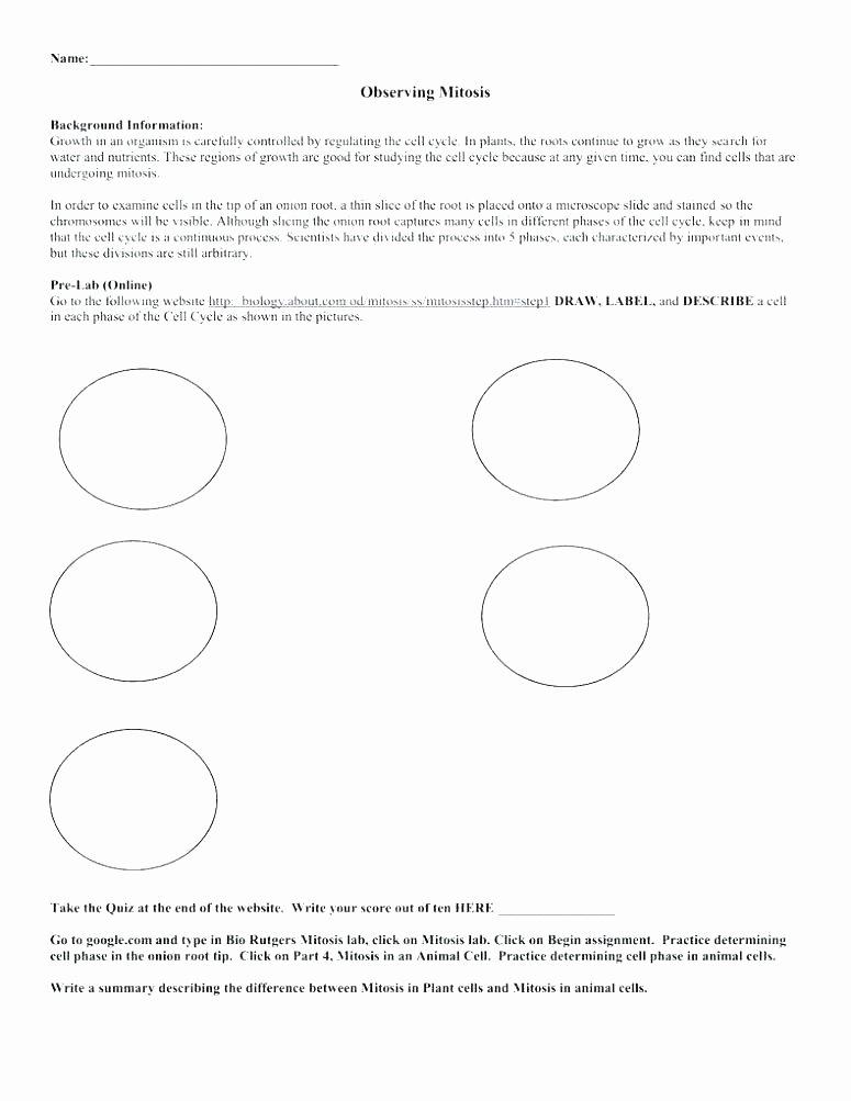Plant Cell Worksheets to Label Parts Of A Plant Coloring Sheet