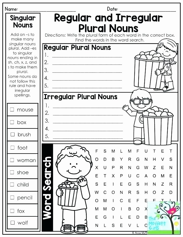 Plural Nouns Worksheet 5th Grade Plural Rules Worksheets