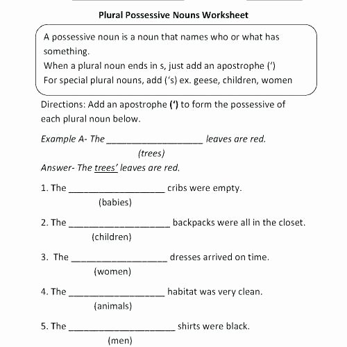 Plural Nouns Worksheet 5th Grade Possessive Nouns Worksheets 5th Grade Possessive Nouns