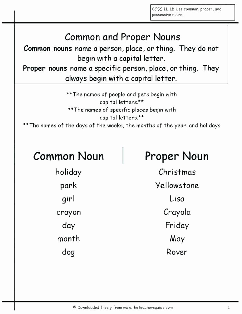 Plurals Worksheet 3rd Grade Plural Possessive Nouns Worksheets 3rd Grade