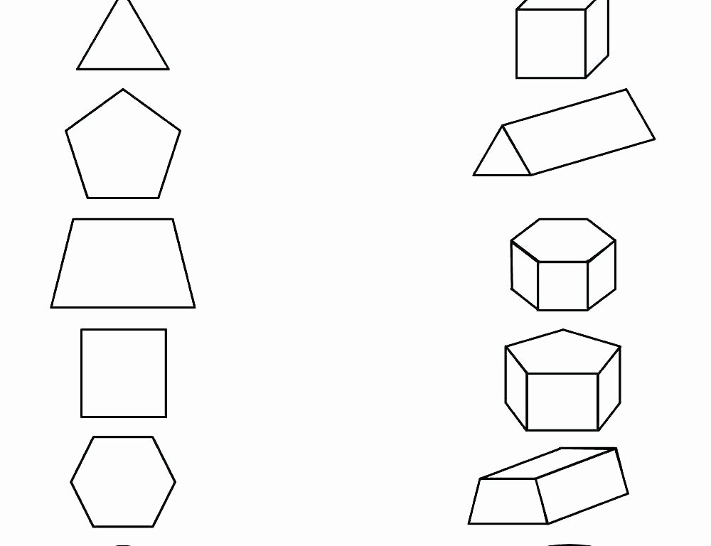Polygons Worksheets 5th Grade Print Free Coloring Pages Shapes for Kids Identifying