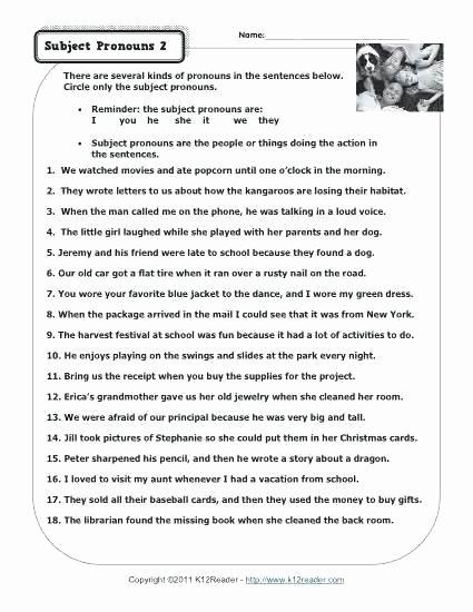 Possessive Pronouns Worksheet 2nd Grade Grammar Pronouns Worksheets Pronoun Worksheets Printable