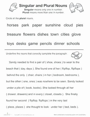 Possessive Pronouns Worksheet 3rd Grade Possessive Noun Worksheet Possessive Pronouns Worksheet