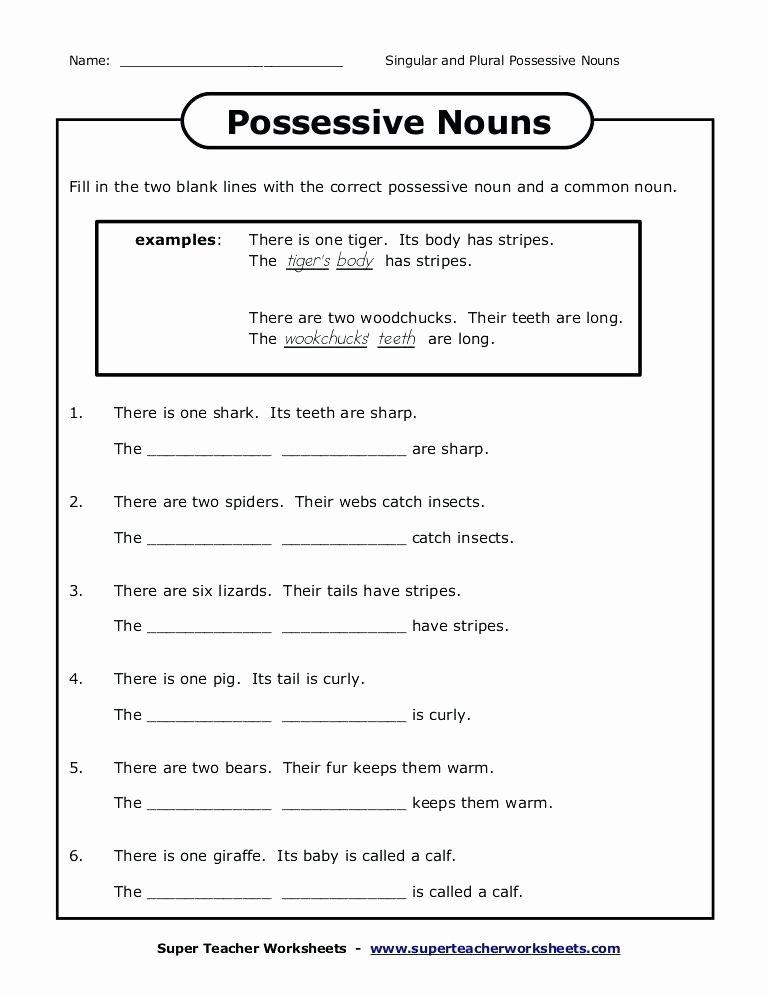 Possessive Pronouns Worksheet 5th Grade Plural Possessive Nouns Worksheets 3rd Grade