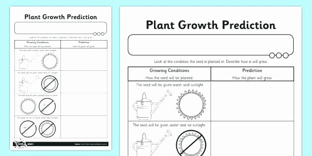 Prediction Worksheets 3rd Grade Predicting Out Es Worksheets for Grade 5 Inference