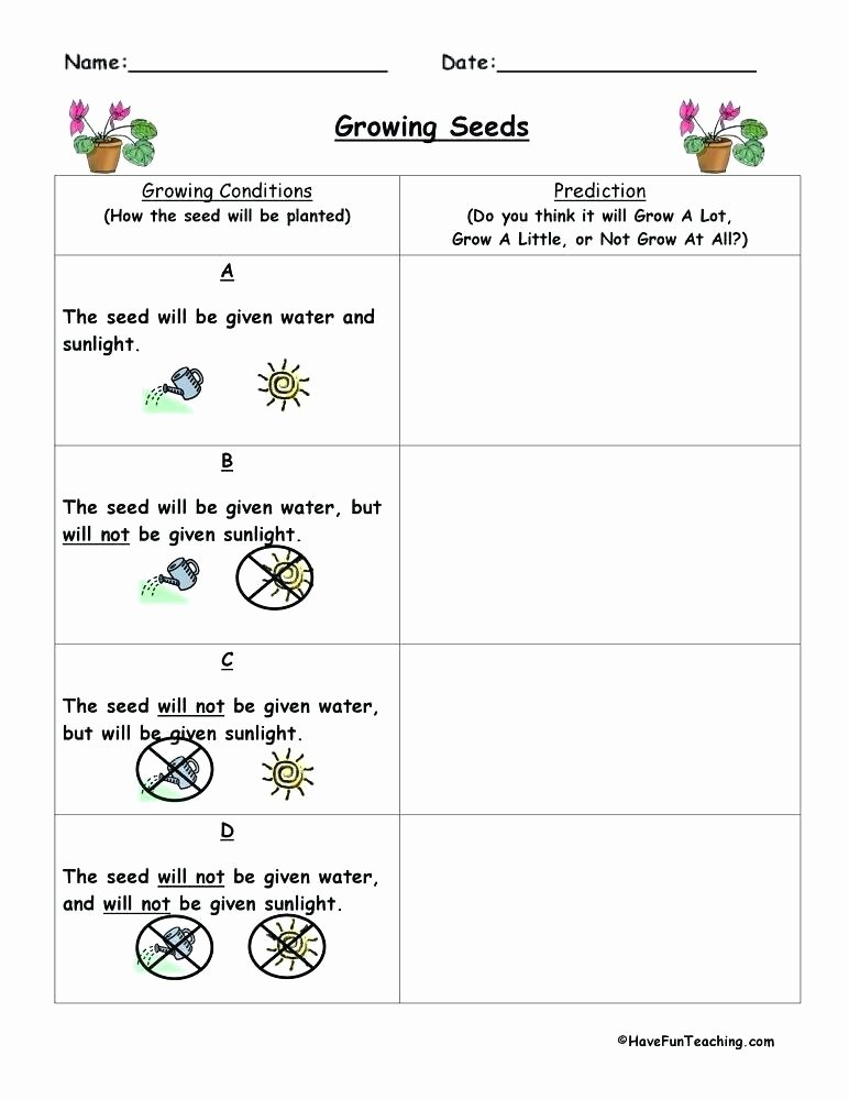 Prediction Worksheets 3rd Grade Prediction Worksheets for First Grade Living Nonliving Cc