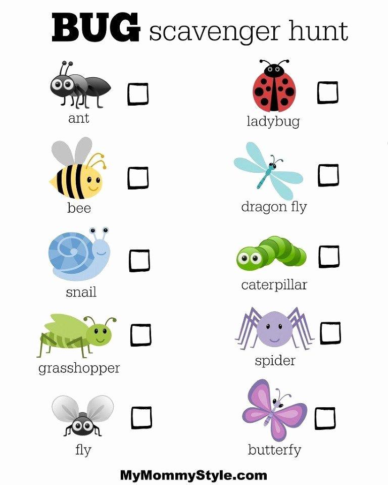 Preschool Bug Worksheets Bug Week Wrap Up Spring Preschool