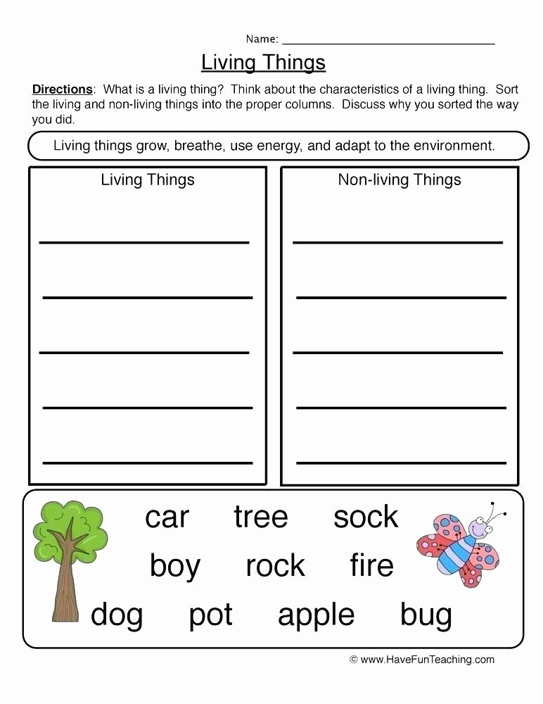 awesome science worksheets for grade 6 living and non things titans coloring free science worksheets for kindergarten and first grade awesome science worksheets