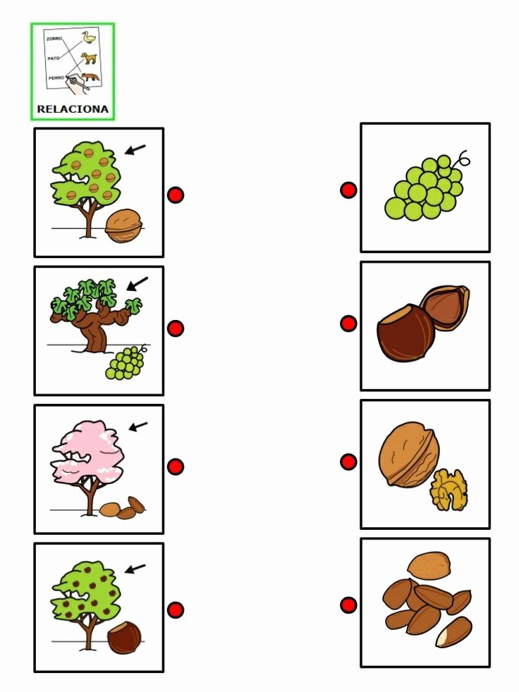 Preschool Fruits and Vegetables Worksheets Fruit and Ve Able Worksheet for Kids