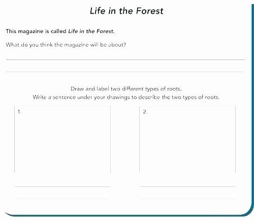 Present Progressive Worksheets Sentence Development Worksheets