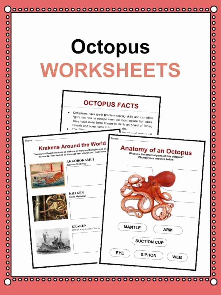 Principal Parts Of Verbs Worksheets Beautiful Octopus Facts Worksheets & Habitat Information for Kids