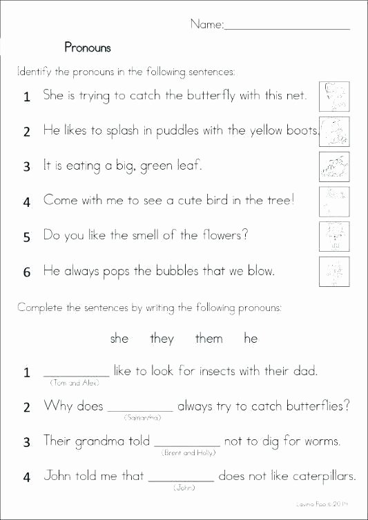 Pronoun Worksheets 2nd Grade Pronouns and Antecedents Worksheets 5th Grade