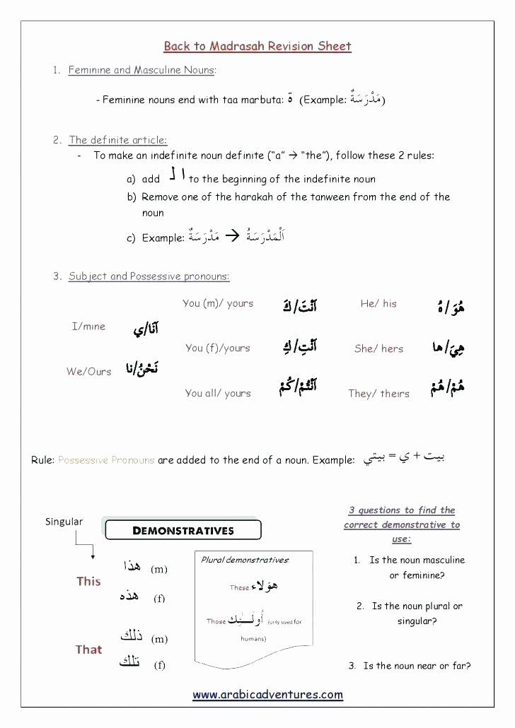 Pronoun Worksheets 5th Grade Possessive Nouns Worksheets 5th Grade Indefinite Pronouns
