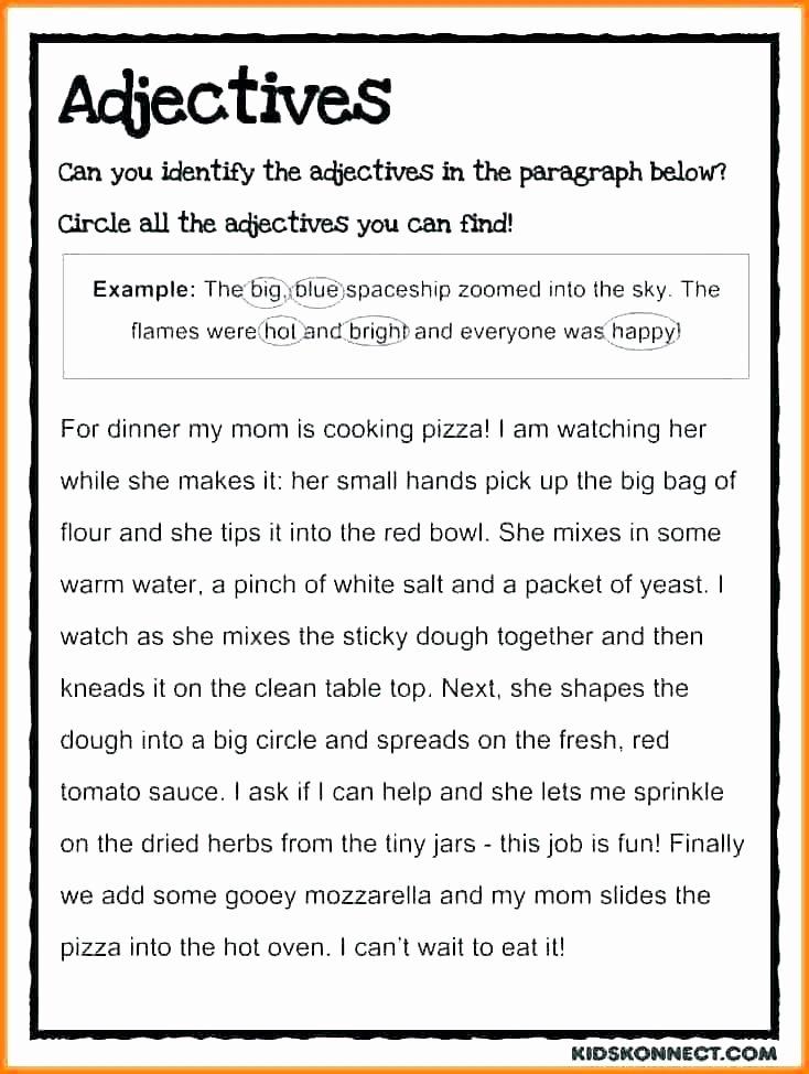 Pronoun Worksheets 5th Grade Pronoun Paragraph Worksheets