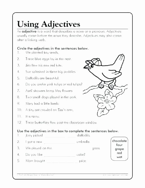 Pronoun Worksheets Second Grade Adjective Worksheets 2nd Grade
