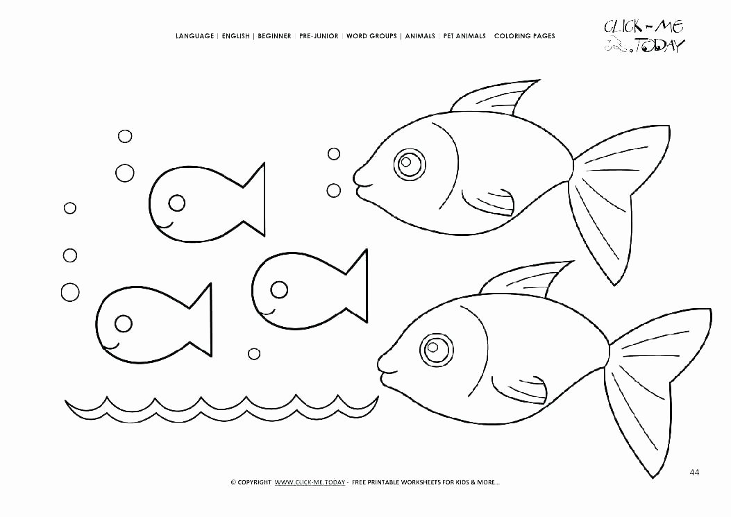 Rainbow Fish Printable Worksheets Elegant Fish Worksheets for High School