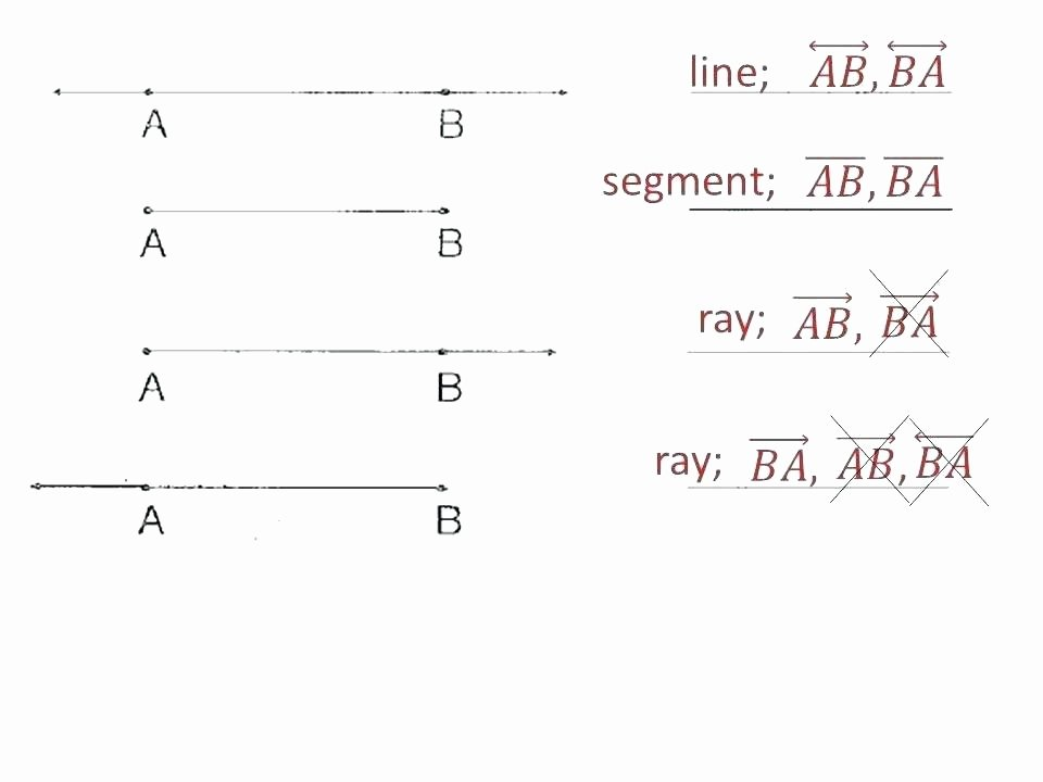 Rays Lines Line Segments Worksheet Lines Line Segments and Rays Worksheets Grade Math Volume