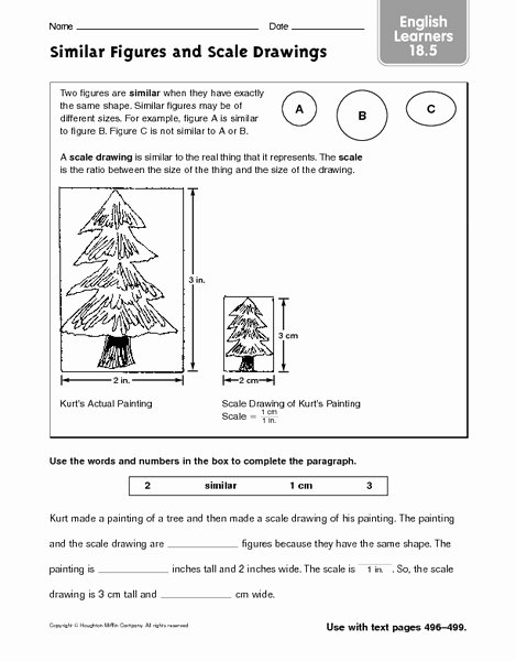 Reading Scales Worksheets Maths Scale Drawing Worksheets Year 3 Maths Worksheet