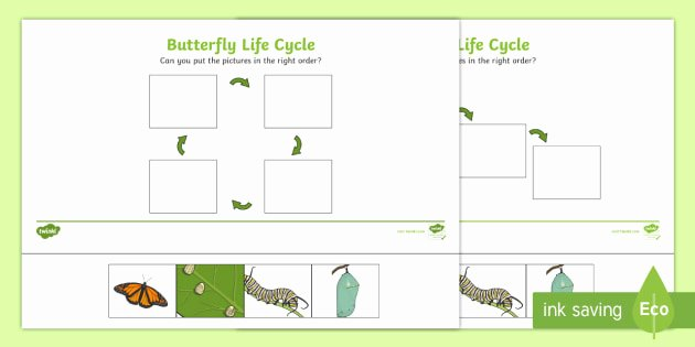 Recycle Worksheets for Kindergarten Lovely Minibeasts Life Cycle Of A butterfly Printables