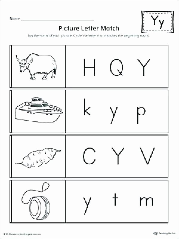 Recycle Worksheets for Kindergarten New Letter Y Worksheet Teaching Resources Teachers Pay Teachers