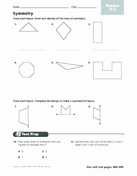 Reflection Math Worksheets Unique Symmetry Worksheets Grade 3