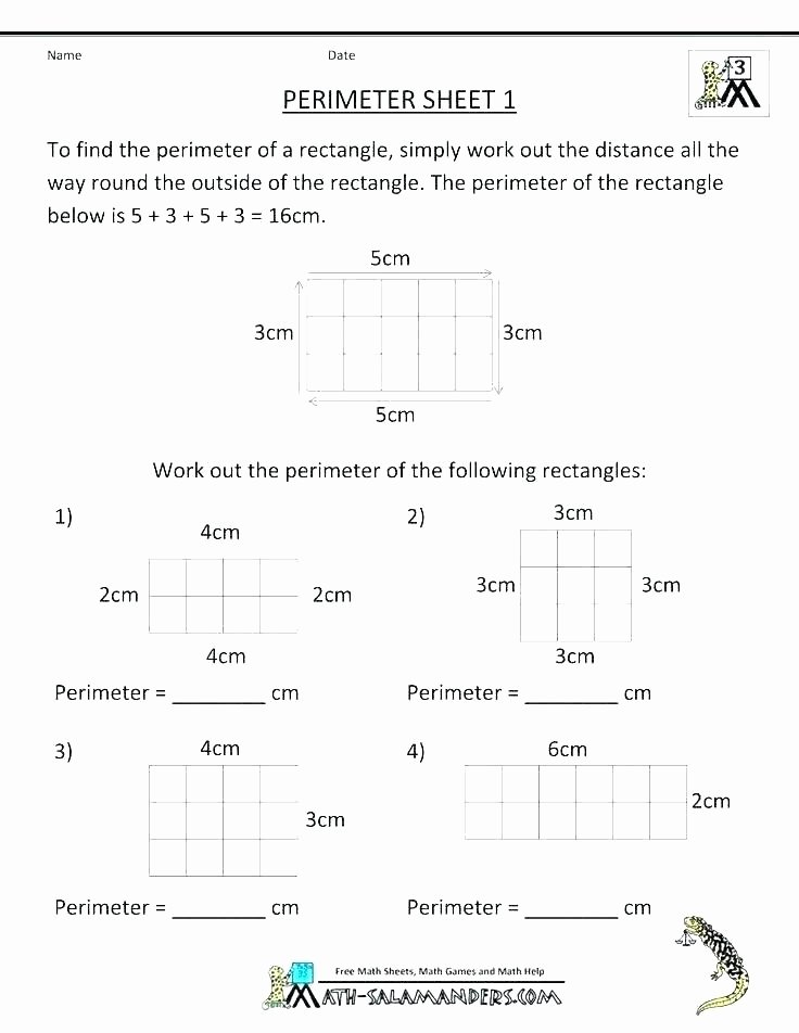 Salamander Math Worksheet Math 1 Worksheets